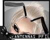 :P: Black Antennas