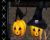 Black Cat & Pumpkins