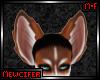 M! Copper Husky Ears 1
