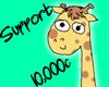 |P| Support - 10,000c