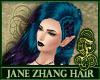 Jane Zhang Gradient