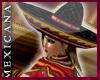 [V4NY] !Mexicana! DLight