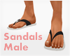 *Sandals #2 Male