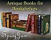 Antique Books for Shelf