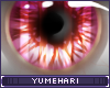 Y!-Punch