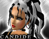 [V4NY] !Candide! PlatBk