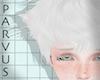 par - Cat ears white -