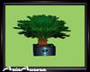 Derivable Plant 3