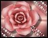 Peach Hair Rose