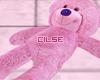•Teddy