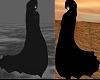 cloak with hood - black