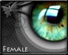 K - Eye 8 F