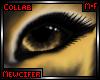 M! Bunbee Eyes