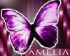 @m! Butterfly Sticker 1