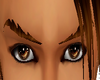 [Gel]Brown eyebrows