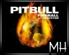 [MH] DJ Trigger Fireball