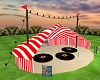 Big Top Circus Tent 