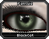 *.:.* BlackCat's Boutique UPDATED New Innocent Skin Set!! (3/18/10) *.:.* - Page 3 Images_df9c79682914c6ff074c6b5a65848ba4