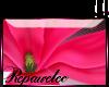 *R* P Magnolia Sticker