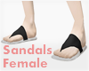 *Sandals #1 Female