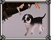 ~E- Husky Puppy w/ Bone