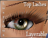 ^L~ Lashes|Giftbox|F