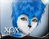 .xpx. Night Furry Tail