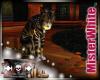 MRW|Daisy's Cat
