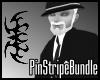 ASM pin-stripe-bundle