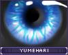 Y!-Watch
