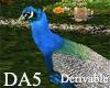 (A) Magic Dream Peacock
