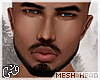 G`Zohar Mesh.W/ Brows