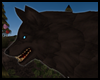 {Sunset Wolf Pet Brown}