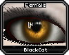 *.:.* BlackCat's Boutique UPDATED New Innocent Skin Set!! (3/18/10) *.:.* - Page 3 Images_edfc7a6796bd2d6fc6b82f30f8033e06
