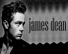 James Dean 3 way Pic Rev