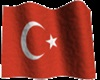 [i]Animated Turkish flag