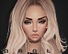 Holland Blonde