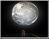*P Moonlight Drive Deriv
