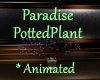[BD]ParadisePottedPlant