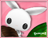 [Y] White Rabbit