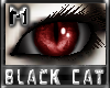 *.:.* BlackCat's Boutique UPDATED New Innocent Skin Set!! (3/18/10) *.:.* - Page 3 Images_fba46b22b5c7f5ec178607952423c615