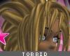 [V4NY] Torrid Leo