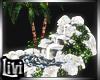Mermaid Waterfalls