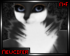 M! Torres Neck Fur