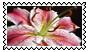 sticker_48092303_4