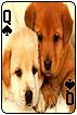 sticker_11685956_47143584