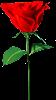 sticker_112627_1950569