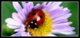 sticker_9230524_47432770