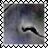 sticker_7684316_30787971
