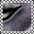 sticker_7684316_30787972